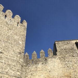 visita guiada castillo de sabiote